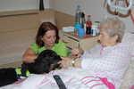 Psí pomoc klientům Diakonie ČCE - hospic CITADELA